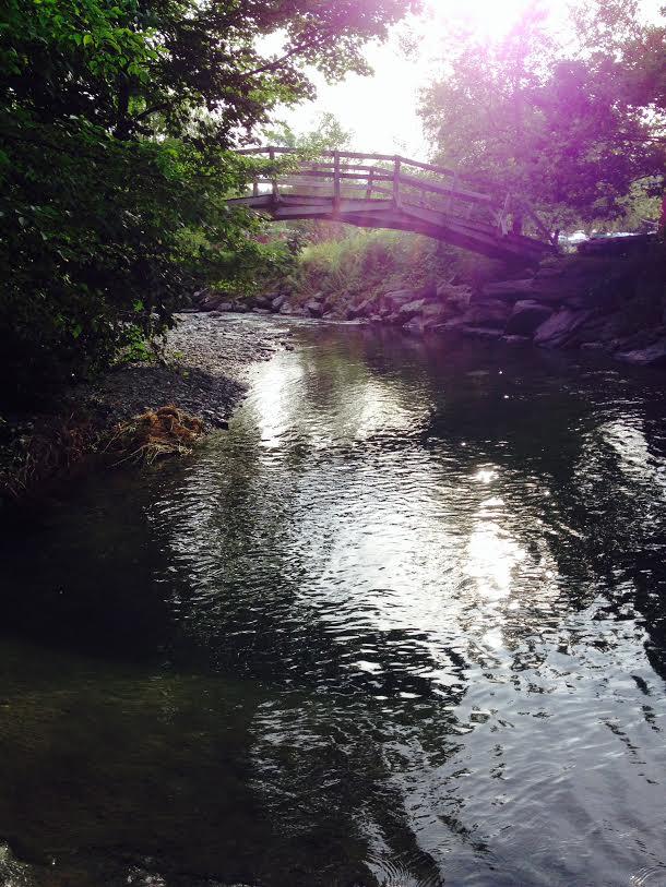 夏となれば、川や池でスイミング。初泳ぎ。水は凍るように冷たく、ワンディップで上がってしまったけれど、気分も体も爽快