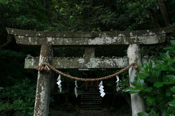 原生林(魚付き林)のなかにある漁師さんたちが建てた小さな神社